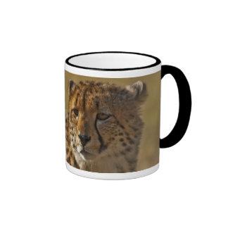 Cheetah Ringer Mug