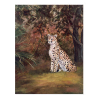 Cheetah Sitting Proud Postcard