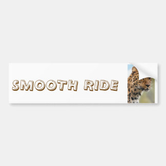 Cheetah Smooth Ride Bumper Sticker