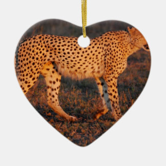 Cheetah South Africa at Sunset Christmas Ornament