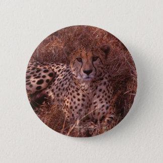 Cheetah Stare 6 Cm Round Badge