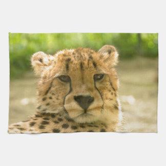 Cheetah Tea Towel