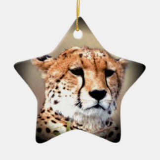 Cheetah Tear Marks Hakunamatata Ceramic Star Decoration
