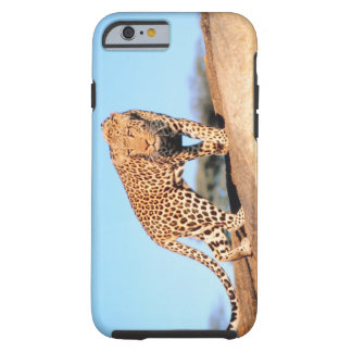 Cheetah Tough iPhone 6 Case