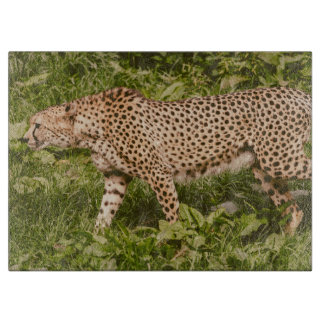 Cheetah Walking In A Field, Animal Photography Cutting Boards