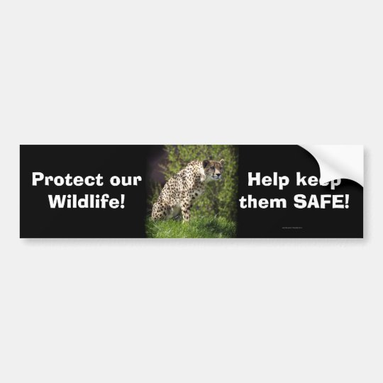 Cheetah Wild Cat Animal-Lover Bumpersticker Bumper Sticker