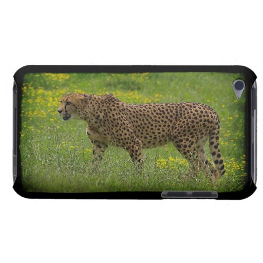 Cheetah Wild Cat Animal-Lover iPod Case iPod Touch Case-Mate Case