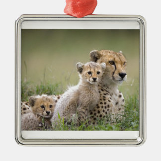 Cheetah With Her Cubs; Motherhood Christmas Ornament