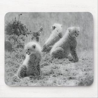 Cheetah's cubs mouse pads