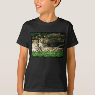 Cheetahs Lounging Grunge T-Shirt