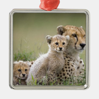 Cheetahs Prospering Christmas Ornament