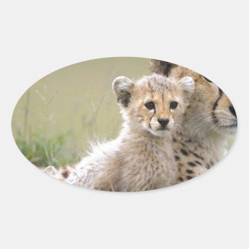Cheetahs Prospering Stickers
