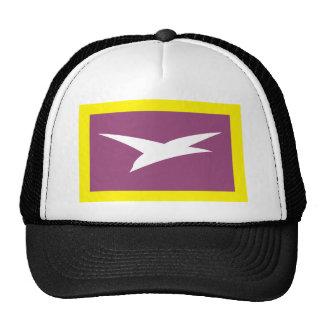 Chekhov (Moscow Oblast), Russia Hat