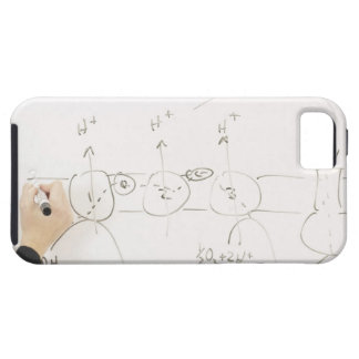 Chemistry on dry-erase board iPhone 5 case