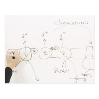 Chemistry on dry-erase board post cards
