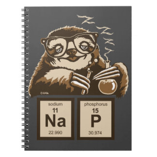 Chemistry sloth discovered nap notebooks