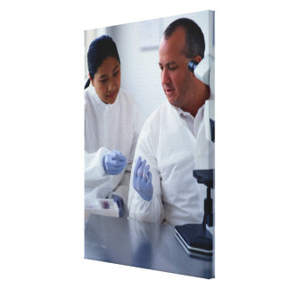 Chemists Looking at a Glass Slide Together Canvas Print