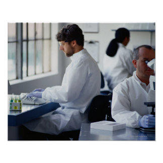 Chemists Working in a Laboratory Poster