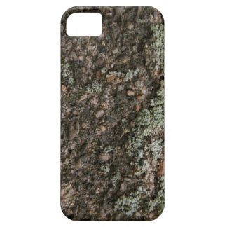 Cherish - iPhone 5 - Barely There Case