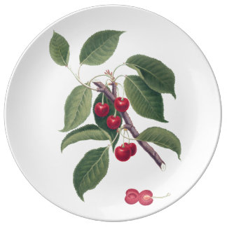 Cherries Plate Porcelain Plates