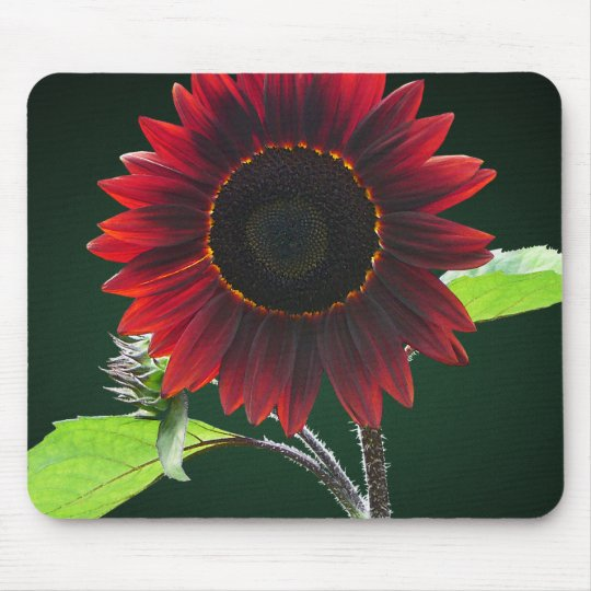 Cherry and Chocolate Sunflower Mouse Mat