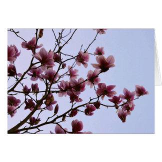 Cherry Bloom Greeting Card