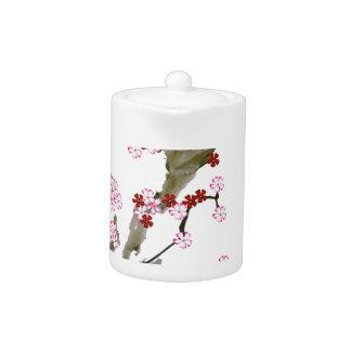 Cherry Blossom 16 Tony Fernandes