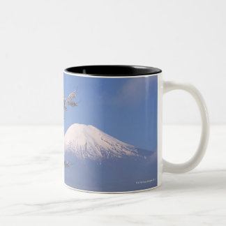 Cherry Blossom and Mt. Fuji 2 Two-Tone Coffee Mug