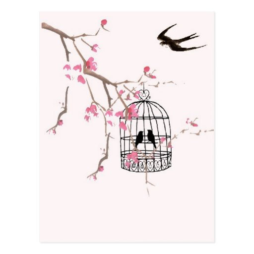 Cherry blossom and swallow post card