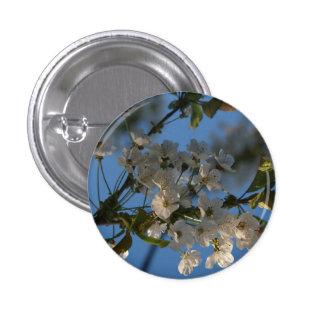 Cherry blossom blue sky button