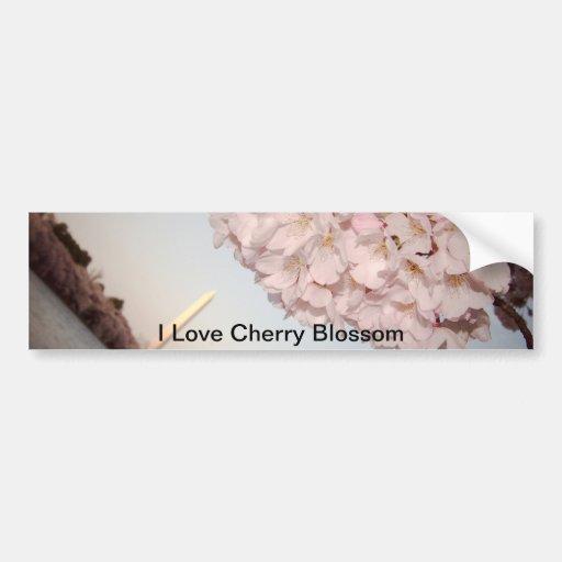 Cherry Blossom Bumper Stickers