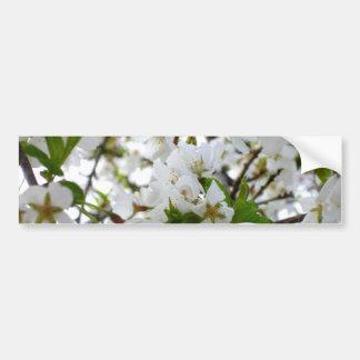 Cherry Blossom Bumper Sticker