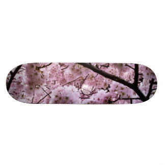 Cherry Blossom Canopy Skate Board Decks