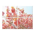 Cherry blossom canvas prints