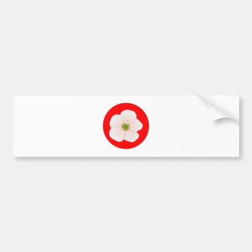 Cherry blossom cherry blossom bumper sticker