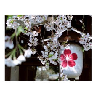 Cherry Blossom Festival in Kyoto Postcard