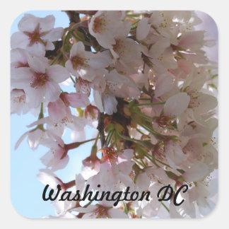 Cherry Blossom Festival Square Sticker