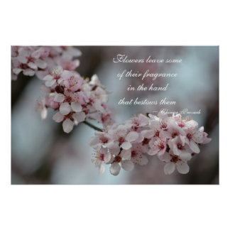 Cherry Blossom Floral Poster