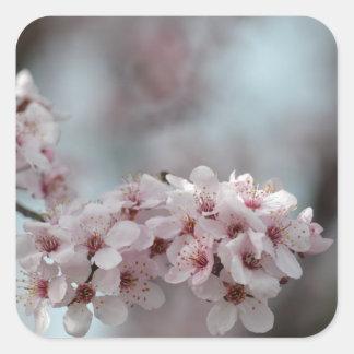 Cherry Blossom Floral Square Sticker