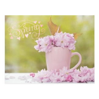 Cherry Blossom Flower FloralStilllife Spring Text Postcard