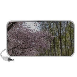Cherry Blossom Garden iPhone Speakers