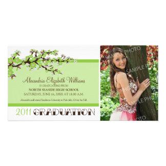 Cherry Blossom Graduation Announcement (green) Photo Cards