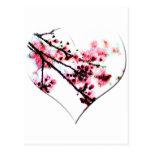 Cherry Blossom Heart Postcard