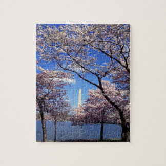 Cherry blossom in Washington DC Jigsaw Puzzle