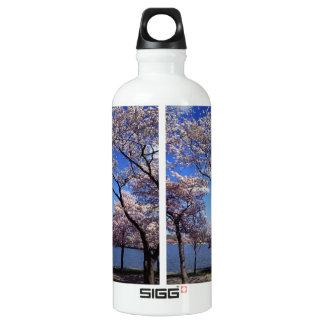 Cherry blossom in Washington DC Water Bottle