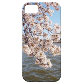 Cherry Blossom iPod Case iPhone 5 Cases