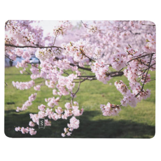 Cherry Blossom Note Pad Journal