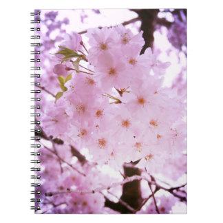 Cherry blossom notebooks