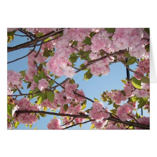 Cherry Blossom notecards Card