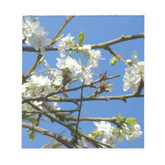 Cherry Blossom Notepad